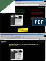 A webcam session