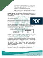 2_43_1598576631_V_Lineamientos_Técnicos_2012_4-6 (1)