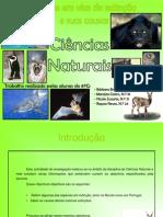 8g_espécies em vias de extinção