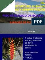 Flora de Bolivia