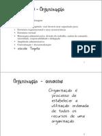 Organização Administração