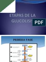 ETAPAS DE LA GLUCOLISIS.pptx