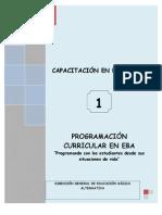 12.-MODULO-PROGR-CURRICULAR-EN-EBA.pdf