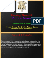 benner nursing theory