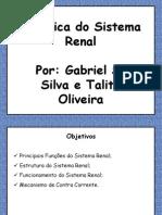 Biofisica Do Sistema Renal