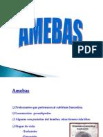 8. Amebas Intestinales