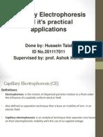 Capillary Electrophoresis (CE)