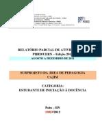 _RELATÓRIO_Iniciação a docencia novo