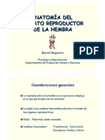 Aparato-reproductor Femenino Clase