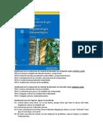 Clasificación de la reabsorción de reborde.docx