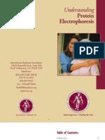 Understanding Protein Electrophoresis