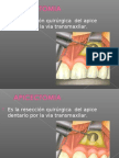 Apicectomia.ppt