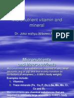 Micronutrient Vitamin and Mineral Tumbang