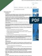 MASB 1 - Presentation of Fi5