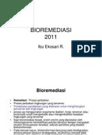BIOREMEDIASI 2010 [Compatibility Mode]