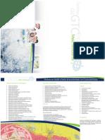 Flyer e ArcGis Desktop IeII