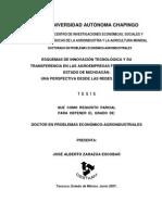 tesis_alberto_zarazua2007. ESQUEMAS DE INNOVACIÓN TECNOLÓGICA Y SU TRANFERENCIA EN LAS AGROEMPRESAS FRUTÍCOLAS