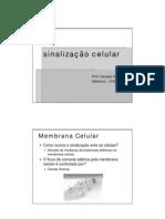03 Sinaliz Celular