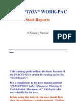 Perception Work-pac Steel Report-tutorial