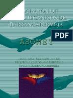 Asociacion Metalmecánicos de Barrancabermeja.pdf