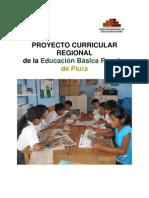 Proyectocurricular Modelo Para Hacer Ver