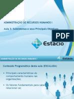 Aula_03 administraçao de recursos humanos I lita