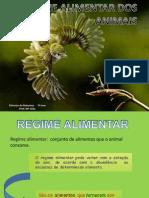 3regimealimentar-121123050755-phpapp01