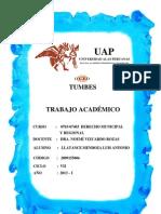 Trabajo Academico Derecho Muniipal y Regional