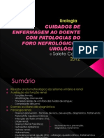 A 2ano Urologia - Salete Costa 2012 Rev1