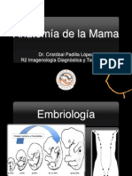 Anatomia radiológica Mama