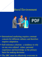 Ch. 9 - Cultural Environment