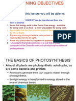Photosynthesis - New