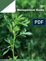 Alfalfa Management Guide1