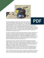 REPORTAGENS - Cunha SP cidade dos fuscas.doc