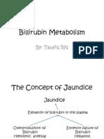 Billirubin Metabolism