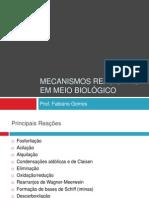 Mecanismos Reacionais_Biorgânica