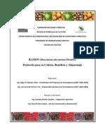 1301RAMON (Brosimum alicastrum Swartz.) Yucatán (1)