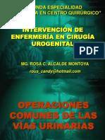 Urologia Exposicion Rosa Alcalde Montoya 2013