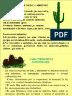 (5)Medio Ambiente