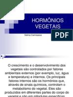 hormniosvegetais-110417202159-phpapp02