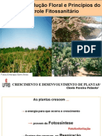 mangueirainduofloral-110218163341-phpapp01