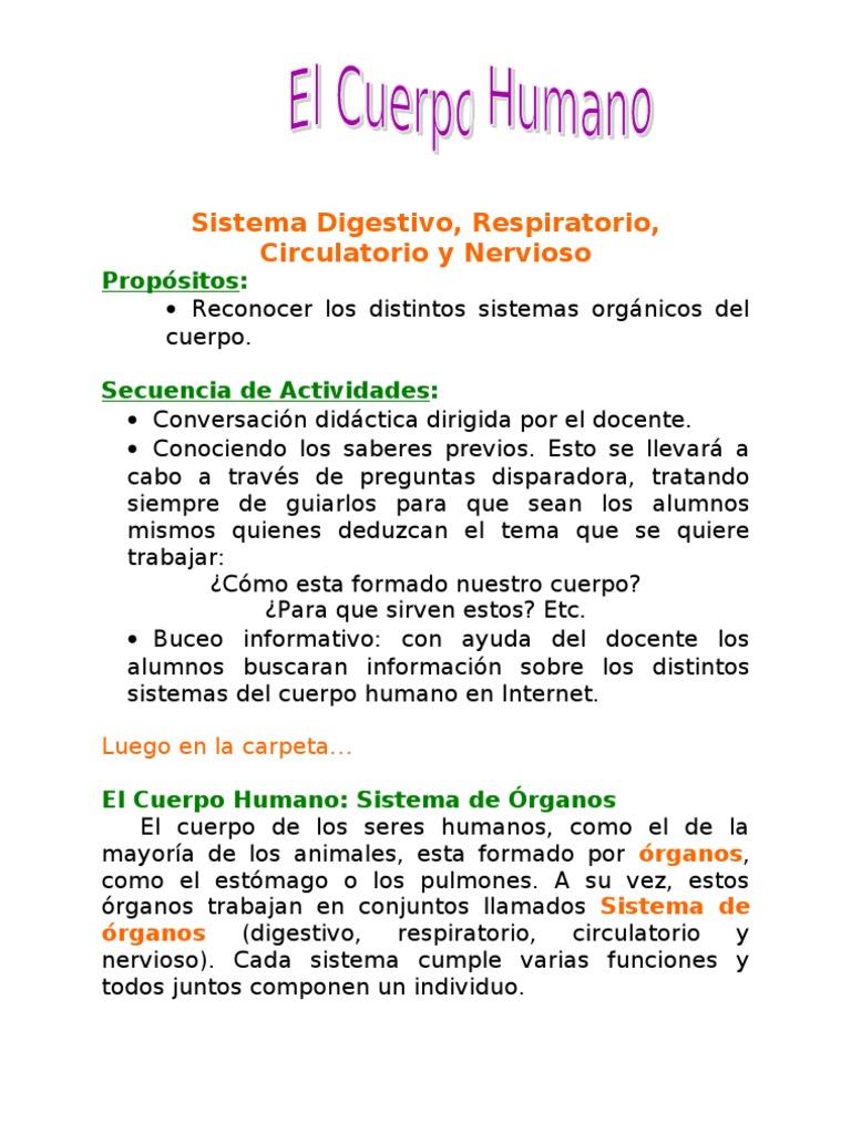 Cuerpo Humano (Sistemas)