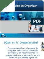 organizacion