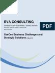 Eva Consulting Report Australia 2011