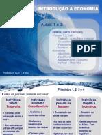 Aulas 1 a 5 Dez Principios[1]