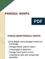 PANGGUL WANITA