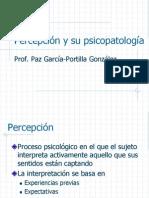 PP Percepcion