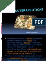 Plantas Medicinales. Roberto Enrique Rincon