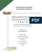 Tesis-Maestria-Rodrigo Portillo Pineda