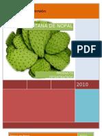 Proyecto- Botana de Nopal.doc